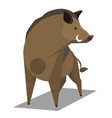 golden wild boar vector image