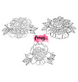 hand drawn peony flower set vector image vector image
