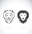Lion head design vector image vector image