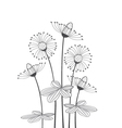 meadow flowers on a white background vector image