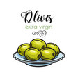 olives on a plate vector image vector image