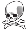 pirate skull vector image vector image