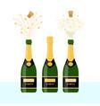 several bottles of champagne vector image