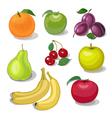 set fruit vector image