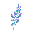 aromatic fresh melissa branch with ripe blossom vector image vector image