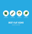 flat icon nature set of linden wood spruce vector image vector image