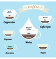 infographics set types of coffee drinks vector image vector image
