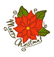 lettering merry christmas text with red poinsettia vector image