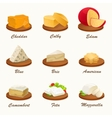 Set of different kinds of cheese on cutting board vector image vector image