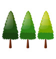 tree in three colors vector image vector image