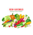 colorful organic banner with vegetables vector image vector image