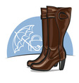 female boots vector image vector image