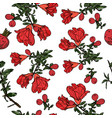seamless pattern with pomegranate flowers vector image vector image