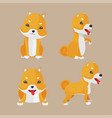 shiba inu dog cartoon set vector image