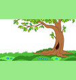 tree in grassy landscape vector image