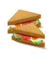 Triangular sandwiches isolated on white vector image vector image