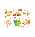 autumn season objects collection autumnal design vector image