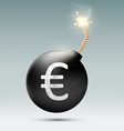 Bomb with euro and burning wick vector image