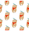 colorful seamless patterns with cute sloths vector image vector image