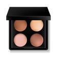 eye shadow cosmetics realistic product vector image vector image