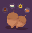 nut for thanksgiving day with set icons vector image vector image