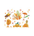autumn season objects collection autumnal design vector image vector image