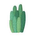 cactus and succulent colorful cartoon vector image vector image
