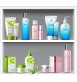Cosmetics On Shelves vector image vector image