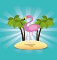 exotic flamingo bird in the beach vector image vector image