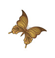 little butterfly in brown gradient colors vector image