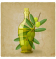 olive branch with bottle oil vector image vector image