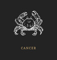 cancer zodiac symbol hand drawn in engraving vector image vector image