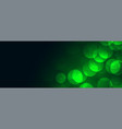 green bokeh lights background with text space vector image vector image