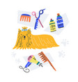 handdrawn grooming concept vector image vector image