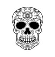 mexican sugar skull design element for logo vector image