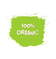organic fresh vegan eco bio raw green design vector image vector image