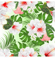 seamless texture tropical flowers vector image vector image