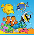 underwater animals and fishes 2 vector image vector image
