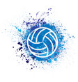 volleyball grunge background vector image vector image