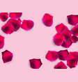abstract natural rose petals o background vector image vector image