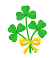 clover bouquet saint patricks day irish holiday vector image
