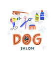 dog salon concept vector image