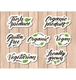 Hand drawn healthy food letterings Label badge vector image vector image