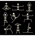 Kung fu and yoga skeletons set vector image