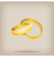 pair gold wedding rings vector image vector image