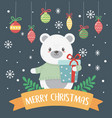 polar bear with present and balls celebration vector image vector image