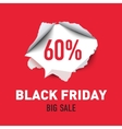 Torn hole in the sheet of red paper Black Friday vector image vector image