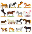 cartoon horse cute animal of horse-breeding vector image vector image