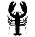lobster silhouette isolated on white background vector image vector image