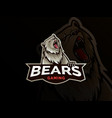 modern professional grizzly bear logo for a sport vector image vector image